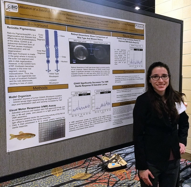 """Rebecca James presented her work on """"Utilization of a Zebrafish Visual Motor Response Assay to Discover FDA Approved Drugs to Treat Retinitis Pigmentosa"""""""